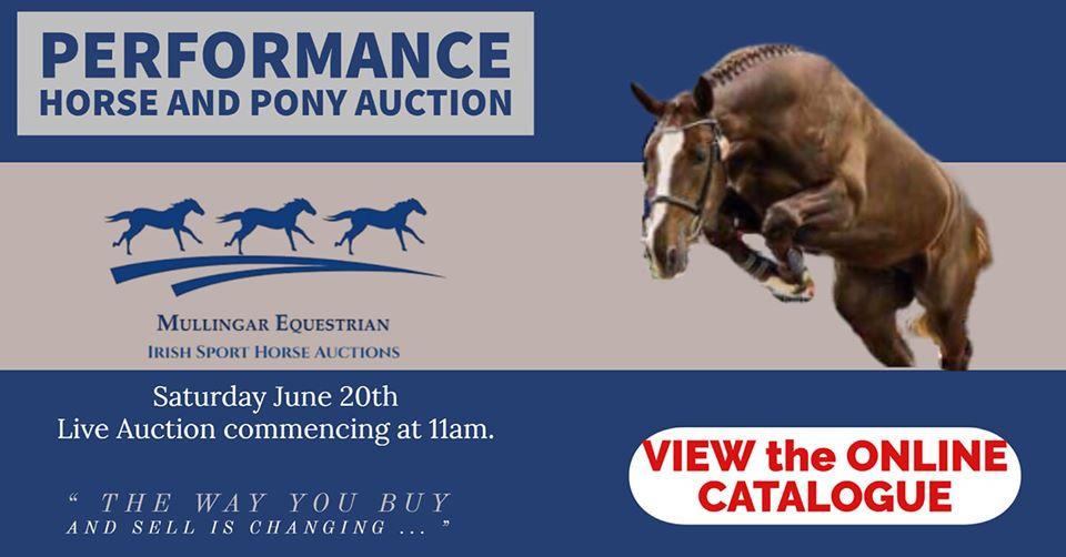 Mullingar Eq Horse and Pony Auction