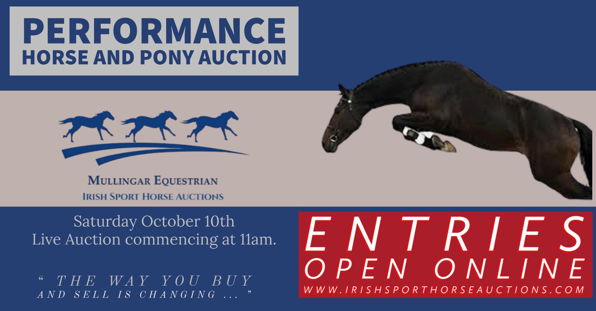 PERFORMANCE HORSE & PONY AUCTION