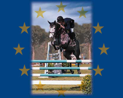 Christmas Horse Championships – Saturday 19th