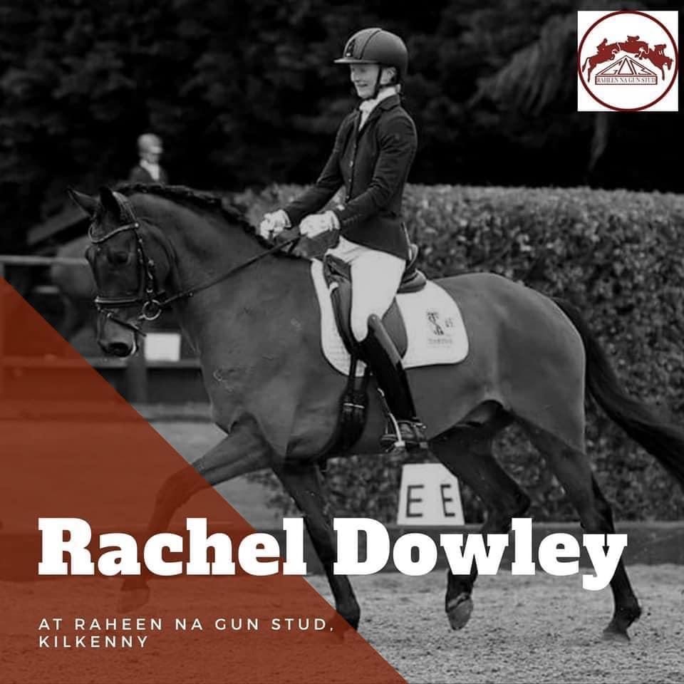 Rachel Dowley Dressage Training at Raheen na Gun Stud