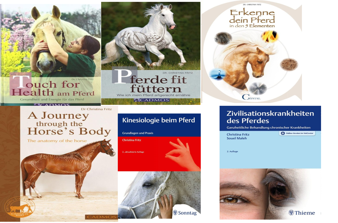 Online course on horse nutrition, metabolic disorders and many more
