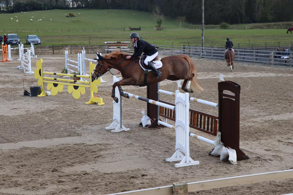 One Day Training Show (Unaffiliated) – Horses & Ponies