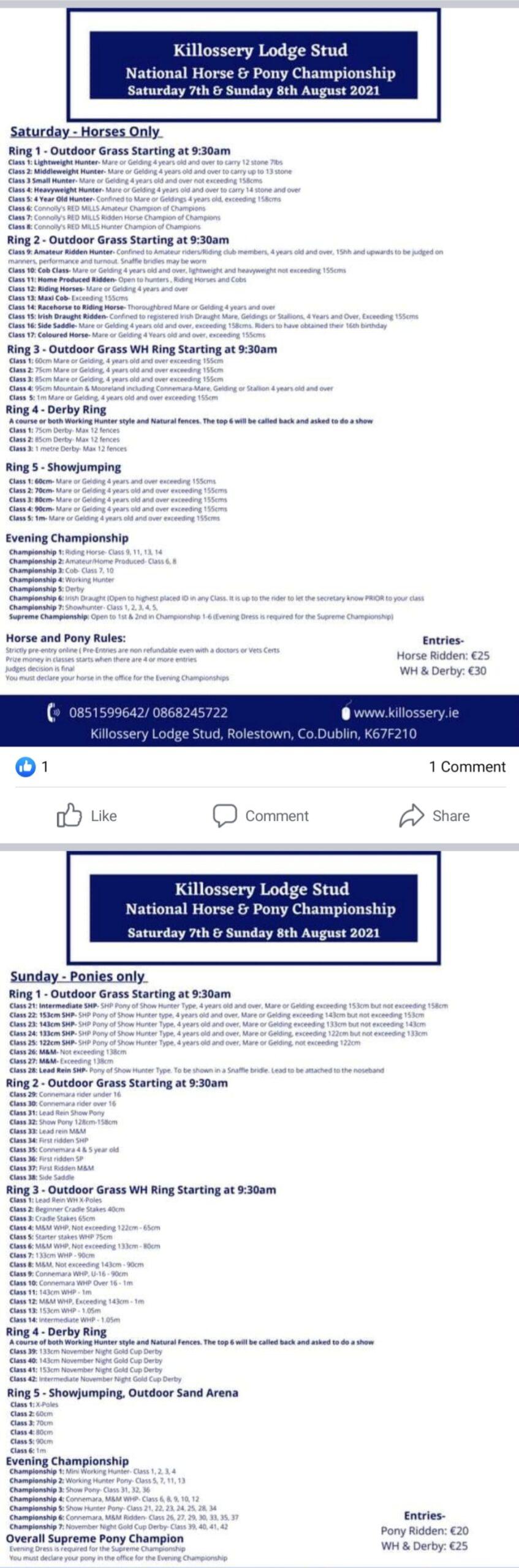 National Horse & Pony Championships