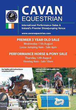 Premier 3 yr old and Performance Horse & Pony Sales