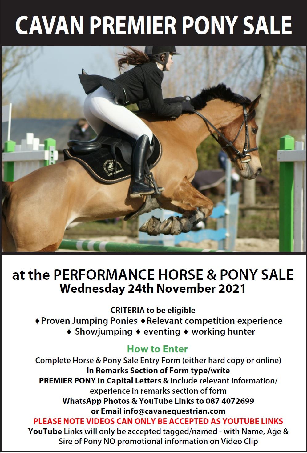 Cavan Premier Pony Sale